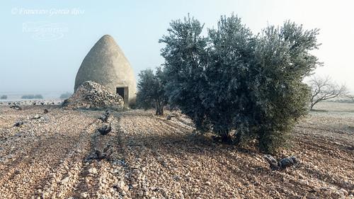 Atavismos del campo manchego / Atavisms of La Mancha Countryside