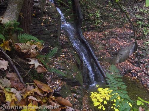 Third Falls while scrambling up the south side of Barnes Gully, Onanda Park near Canandaigua, New York