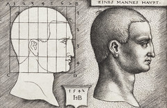 Vintage Illustration Profile Study of Man's Head published in 1542 by Hans Sebald Beham (1500-1550). Original from New York public library. Digitally enhanced by rawpixel.