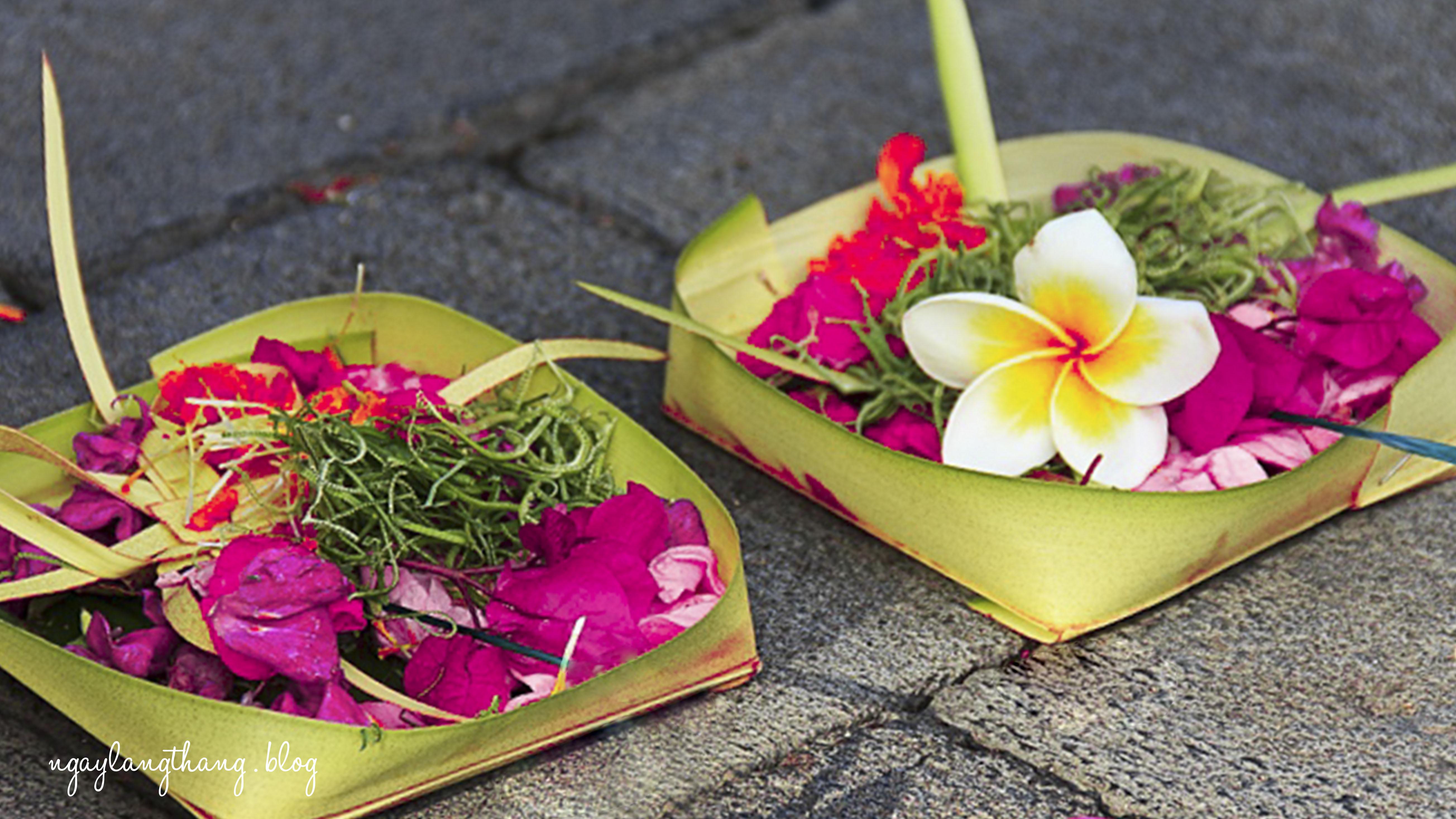 10 điều cần biết trước khi đến Bali-Hoa cúng Bali