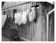 Laundry Fishing Village