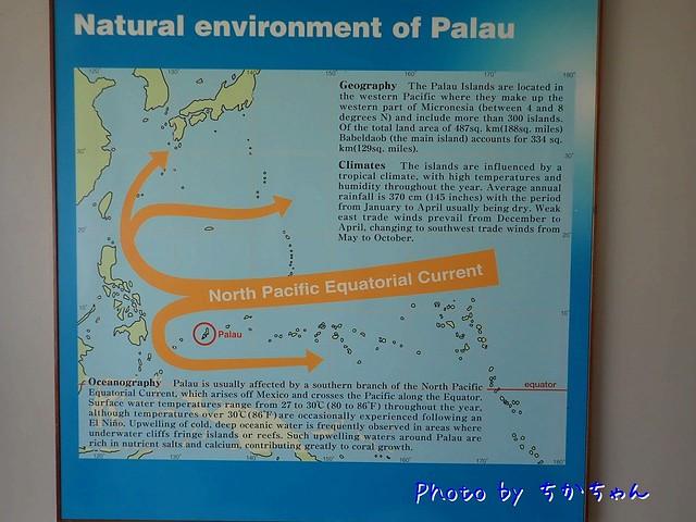 パラオの海流を学び
