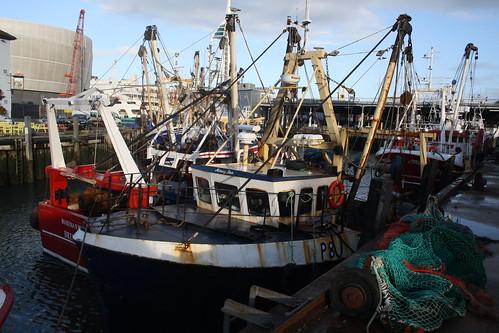 Fishing Boat P8 Morning Star