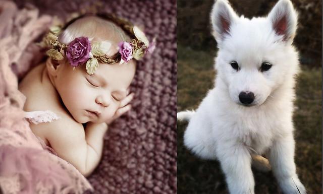 baby&puppy