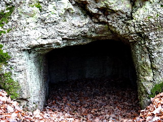 versteckten Höhle hinter Büschen im Kaitzbachtal 02696