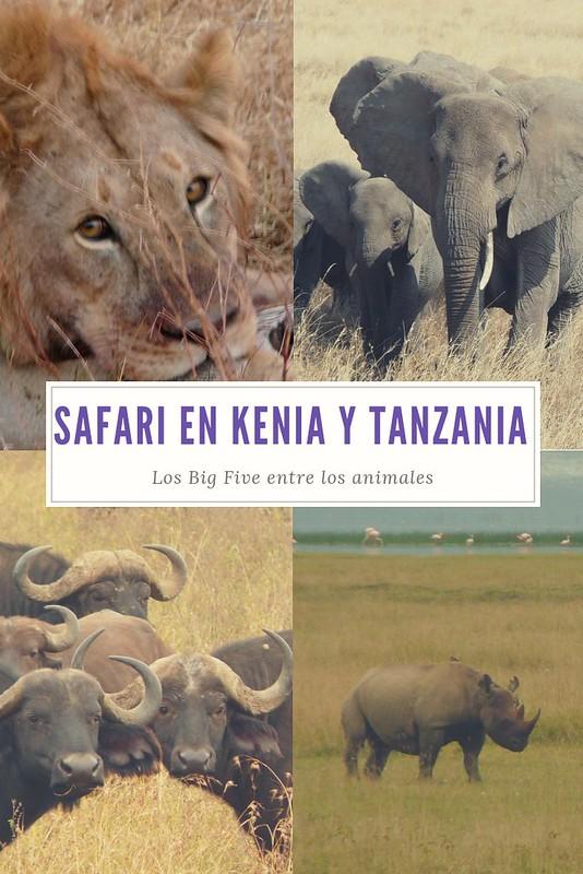 Hacer un safari en kenia y tanzania