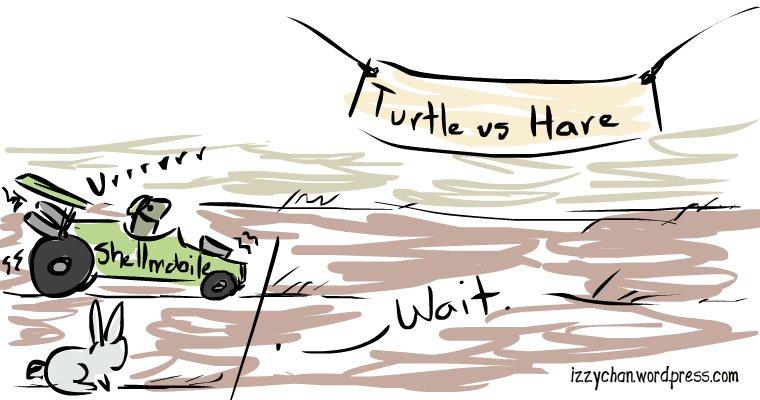 turtle vs hare race car
