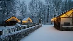 Winter in GaiaZOO