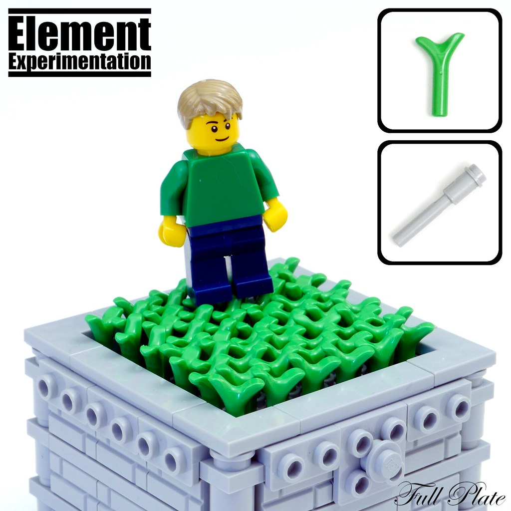 Element Experimentation: Carrot Top Grass