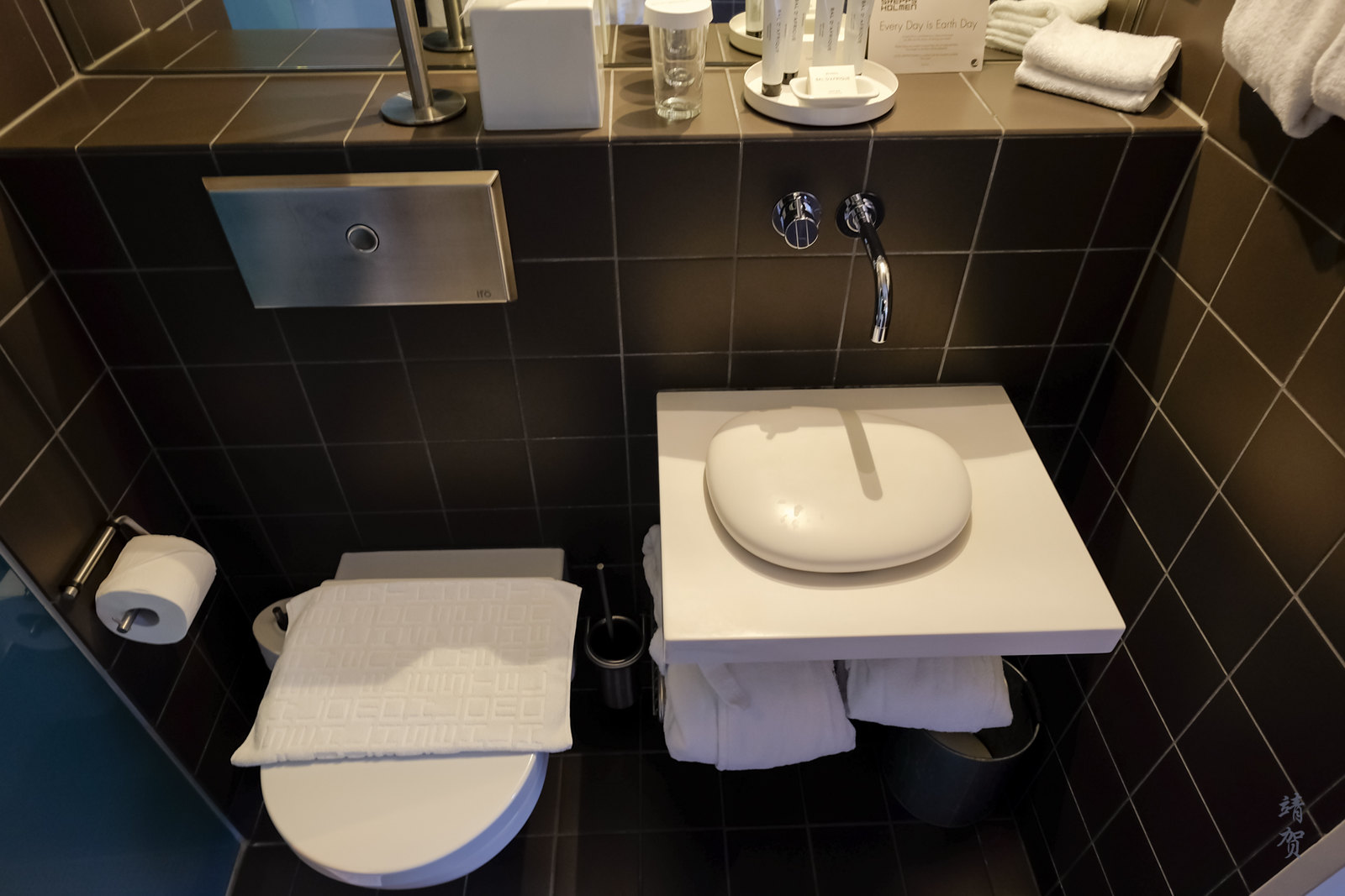 Unique sink and toilet