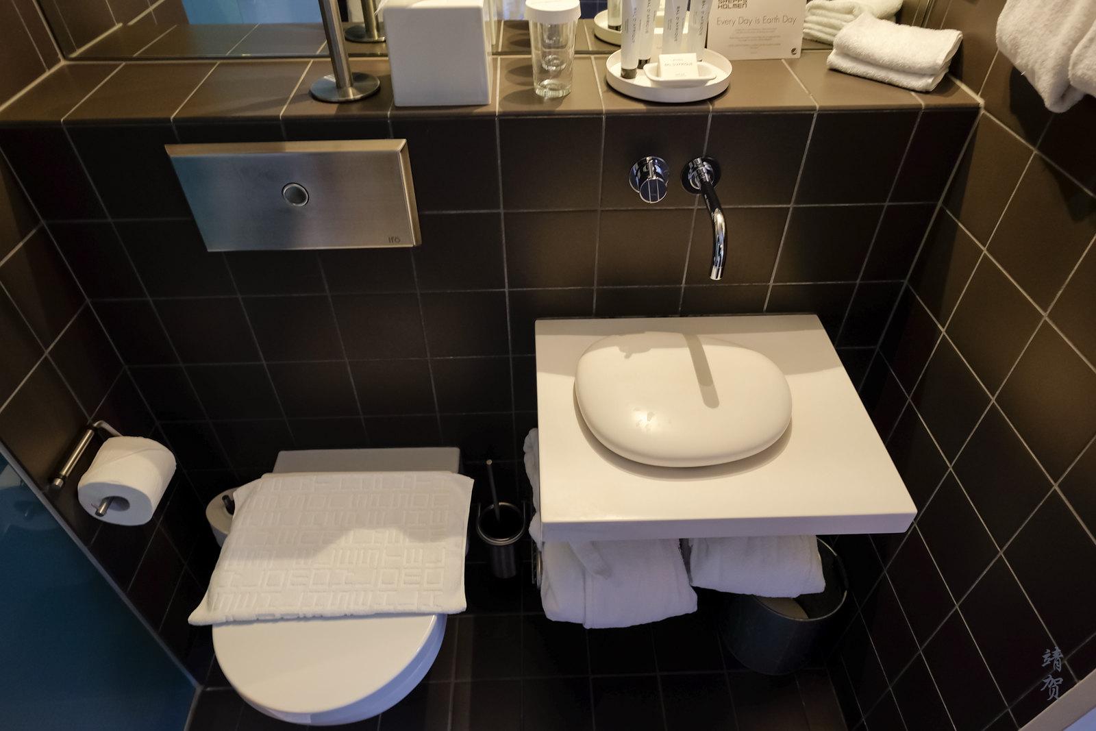 Unique sink and toilet