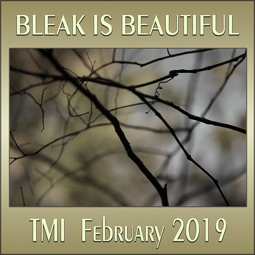 Closed February Contest Bleak Is Beautiful Tmi Your Art Amp