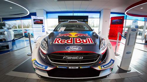 Fiesta RS WRC 2018, Fisheye