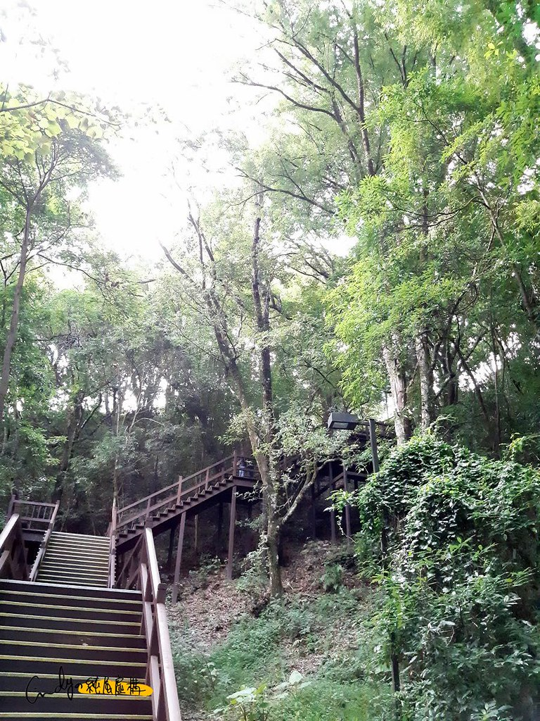 奧萬大森林遊樂區
