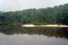 View of the Ogooue River from the train in Gabon