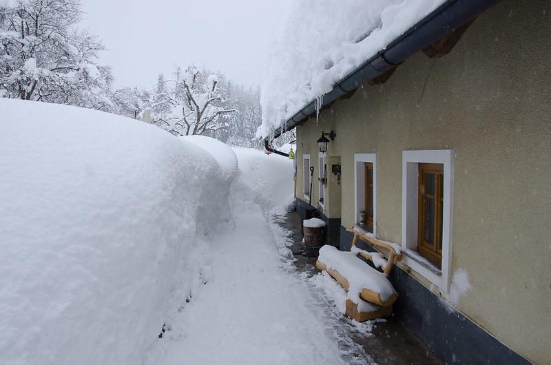 SchneedruckRosenau-12