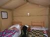 Stan v kempu Zmela, foto: Petr Nejedlý