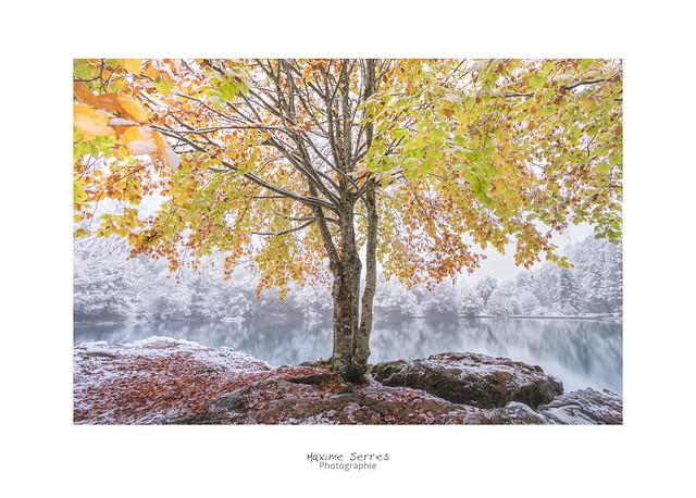 Rattrapé par l'hiver..., Canon EOS 7D MARK II, Canon EF-S 10-22mm f/3.5-4.5 USM