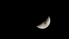 November's Crescent Moon