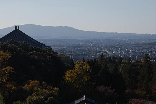 20181110_第7回シグブラフォトウォークin奈良_139