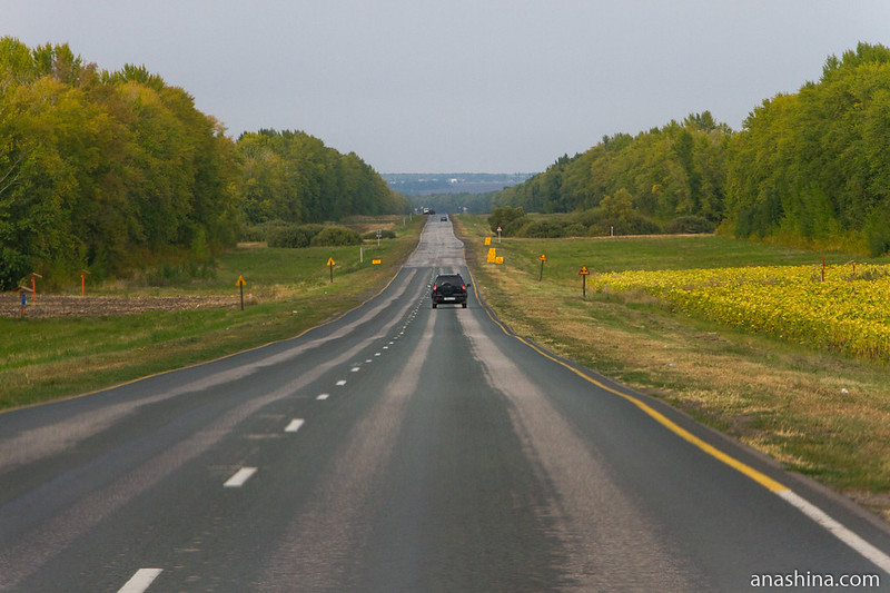 Дорога в Пензенской области