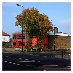 Fire Station Trees