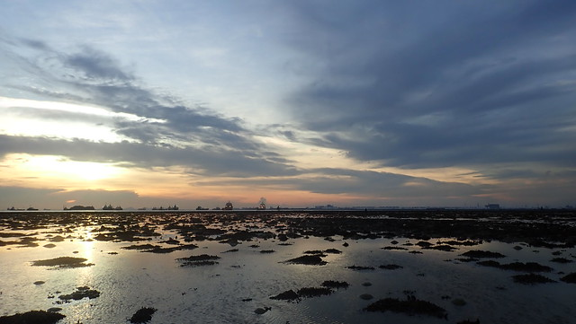 Living reef of Terumbu Pempang Tengah