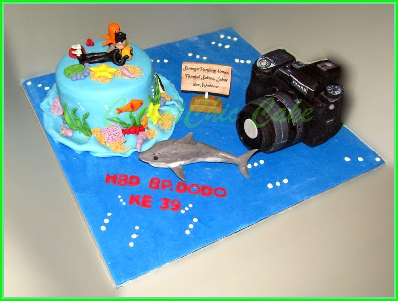 Cake Diver & camera Fuji Bp dodo 15 cm dan realsize