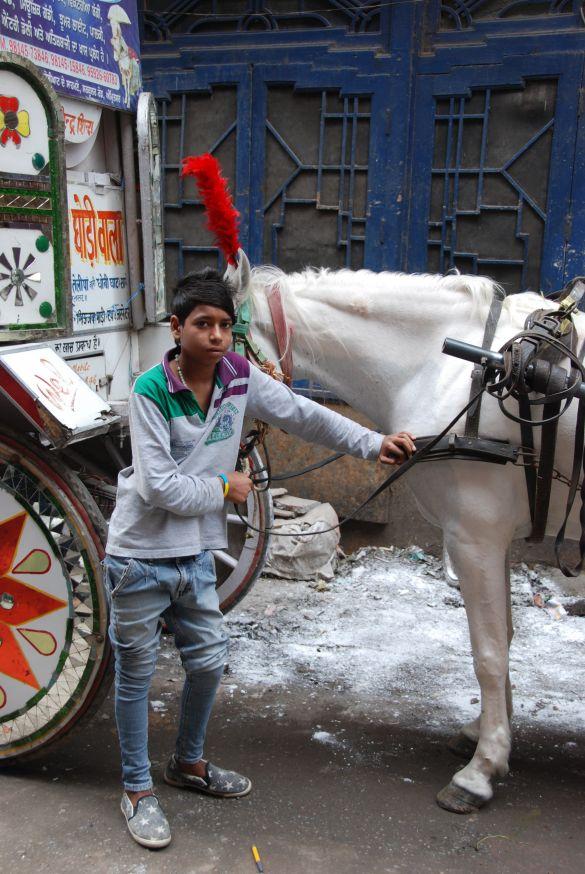 DSC10004IndiaAmritsarIkPasWelOpHetPaard