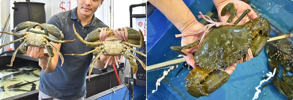 阿布潘水產 海鮮市場 台中海鮮 批發 龍蝦01