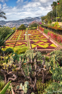 Jardim Botanico, Funchal