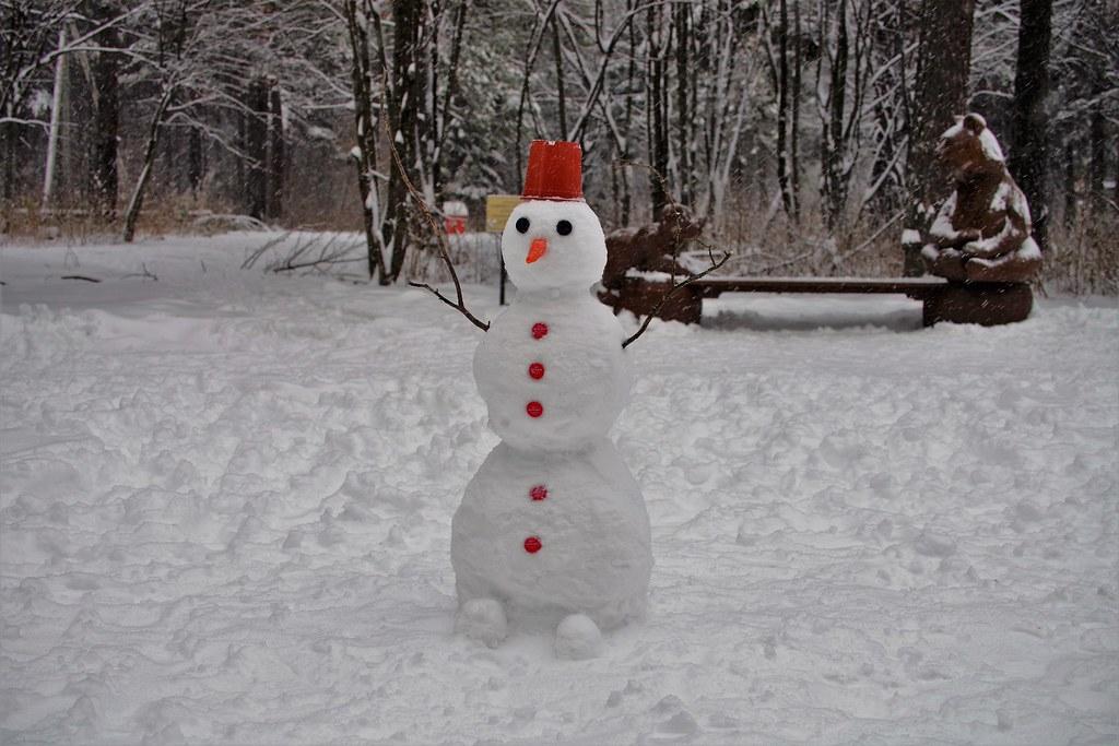 День солидарности снеговиков!