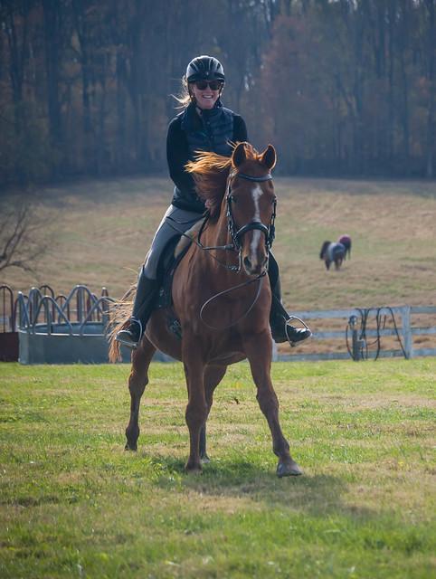 20181116 Austen's Ponies_37