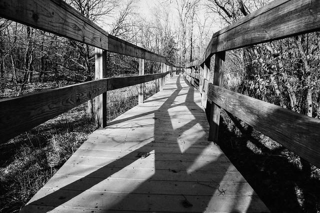 Parkville Nature-143