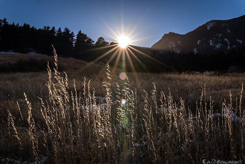 sunset grass bouldercolorado doudydrawtrail