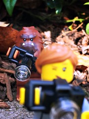 Bigfoot photography...