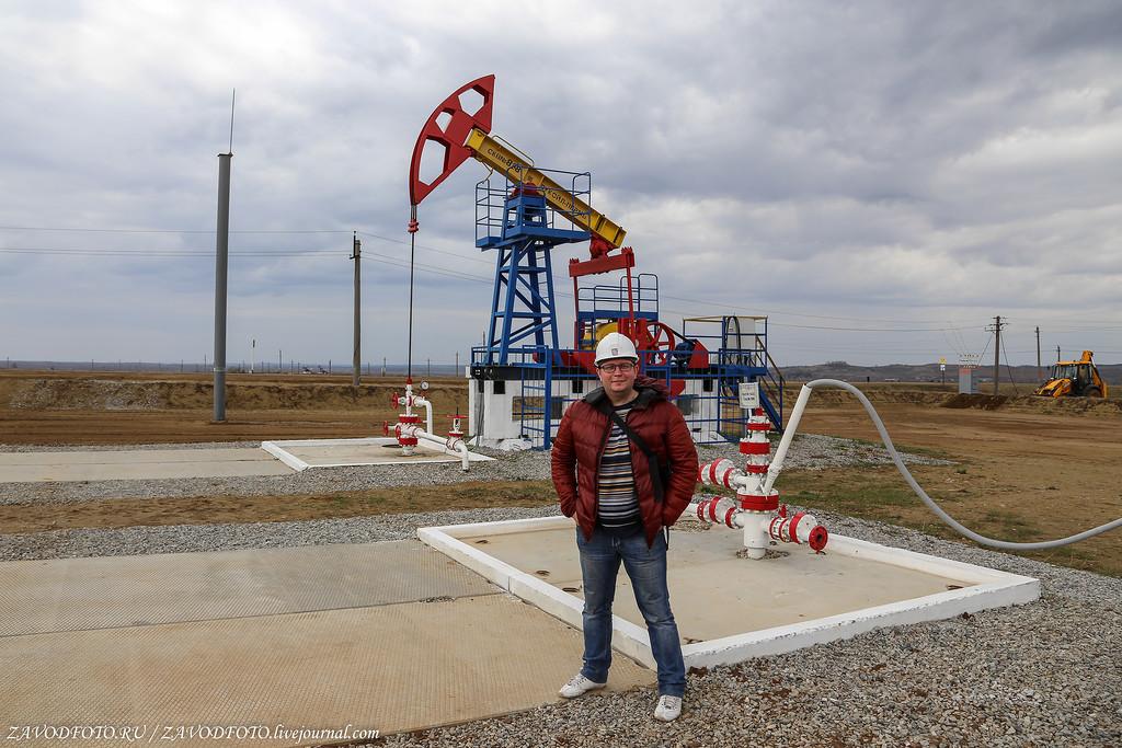 Сколько нефти добыли в России в 2018 году