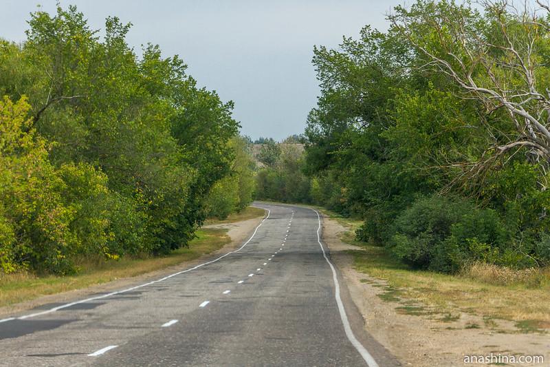 Дорога, Саратовская область
