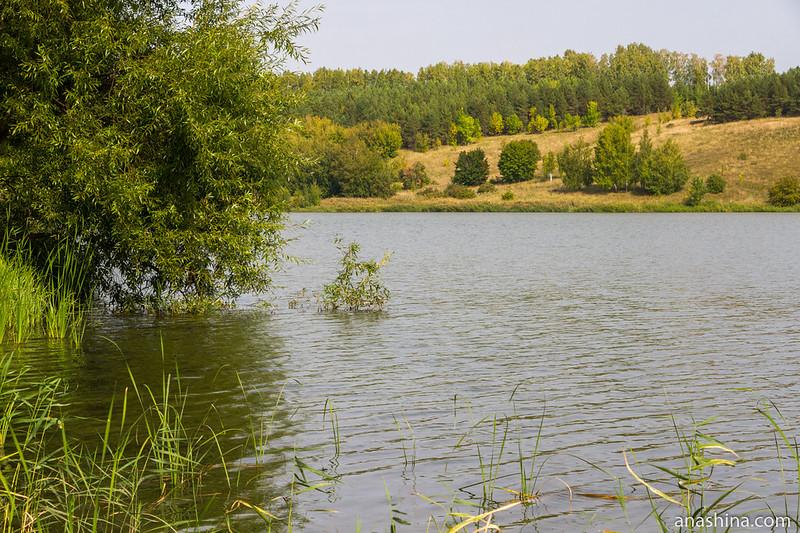 Чистые пруды, Пенза
