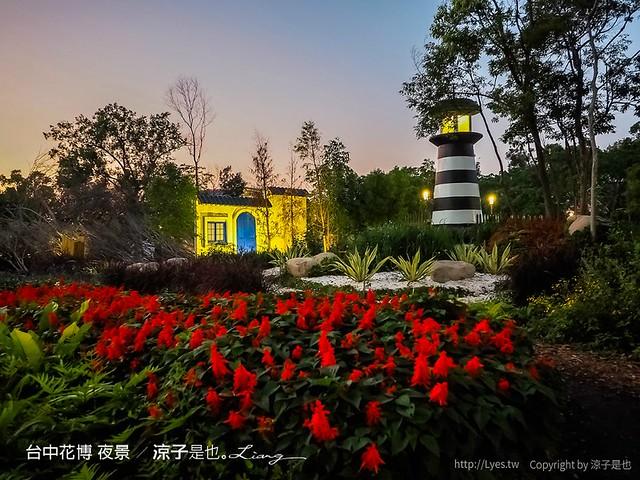 台中花博 夜景 2