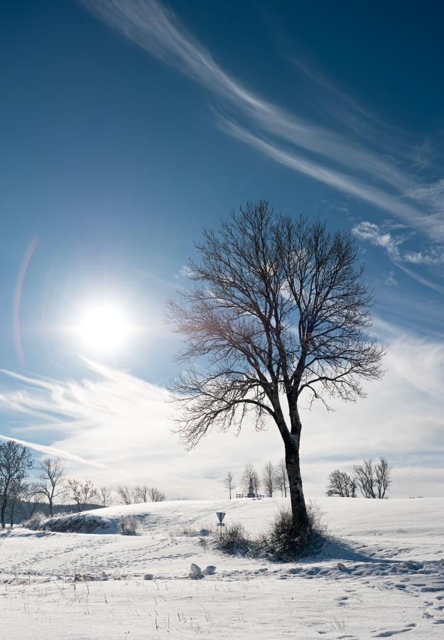 Un peu de neige 46852964411_2fb0e011ed_o