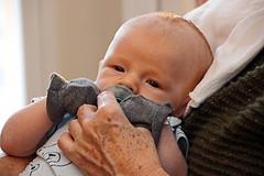 little Zach