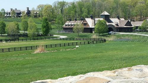 horses farm newyork amenia dutchesscounty summer spring route83