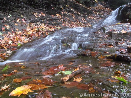 A section of the First Falls in Barnes Creek Gully, Onanda Park near Canandaigua, New York