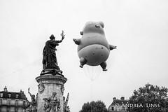 manifestation contre trump...