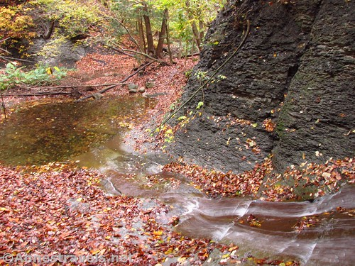 Looking back down the first falls in Barnes Gully, Onanda Park near Canandaigua, New York