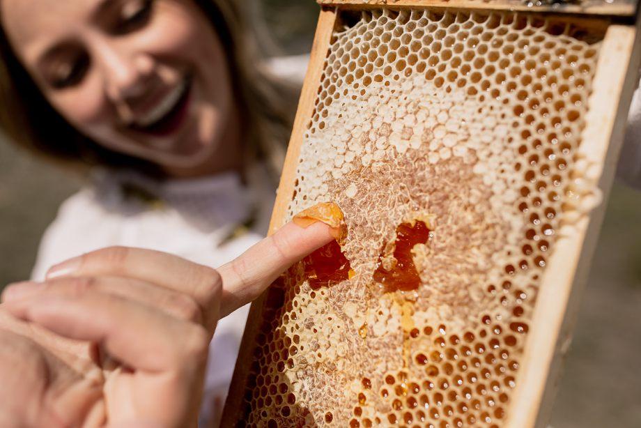 Beekeeping luxury vacation experience