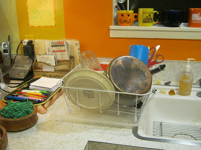 Dishes-2536, Canon POWERSHOT A490
