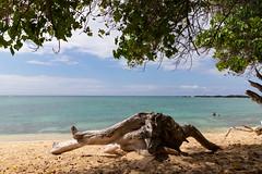 Big island beaches, Hawaii