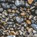 6eorge.C posted a photo:	Top down view of some pebbles.